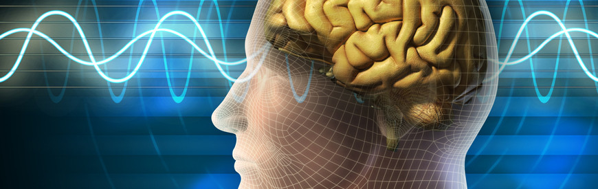 Studying brain wave patterns & interactions